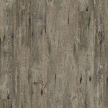 Shaw Floors Resilient Residential Alto HD Plus Biella 00552_2731V