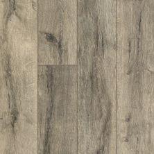 Shaw Floors Resilient Residential Alto HD Plus Sanremo 00567_2731V