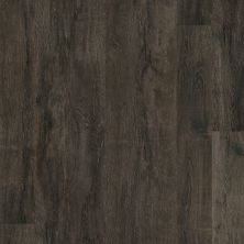 Shaw Floors Resilient Residential Alto HD Plus Torino 00793_2731V