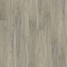 Shaw Floors Vinyl Residential Palatino Plus Palace 00508_2801V