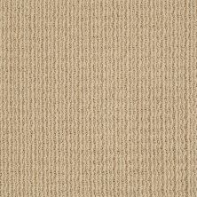 Anderson Tuftex Infinity Abbey/Ftg Guest Quarters Chamois 00221_282AF