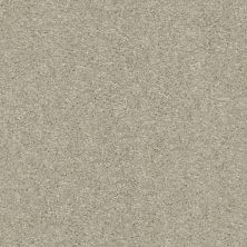 Shaw Floors Your Choice Solid 15.3 Cascade 00152_287SE
