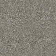 Shaw Floors Your Choice Solid 15.3 Pewter Solid 00550_287SE
