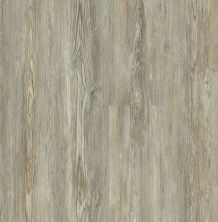 Shaw Floors Resilient Residential Basilica Plus Legend Pine 05031_2894V