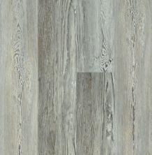 Shaw Floors Resilient Residential Basilica Plus Ashland Pine 05032_2894V