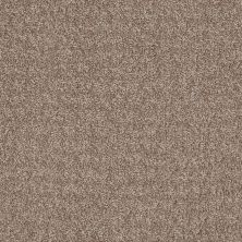 Anderson Tuftex SFA Vasalia Sedona Sand 00765_29SSF