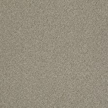 Anderson Tuftex Creative Elegance (floors To Go) Guardian Angel Taupestone 00754_300AF