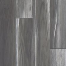Shaw Floors Resilient Residential Tenacious Hd+ Accent Shadow 00921_3011V
