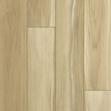 Shaw Floors Resilient Residential Tenacious Hd+ Accent Warm Suede 02009_3011V