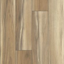 Shaw Floors Resilient Residential Tenacious Hd+ Accent Sunbaked 02010_3011V
