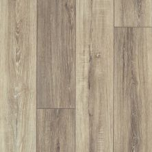 Shaw Floors Resilient Residential Tenacious Hd+ Accent Sable 07083_3011V