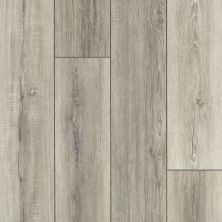 Shaw Floors Resilient Residential Tenacious Hd+ Accent Basillica 07085_3011V