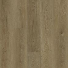 Shaw Floors Resilient Residential Wanderer Grand Canyon 02027_3053V
