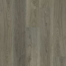 Shaw Floors Resilient Residential Ethereal Oaks Drift 05100_3054V