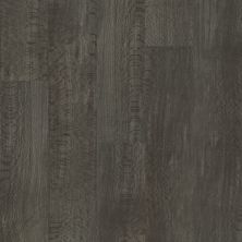 Shaw Floors Resilient Residential Trailblazer Briar 07197_3055V