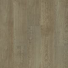 Shaw Floors Resilient Residential Trailblazer Wild Wood 07198_3055V