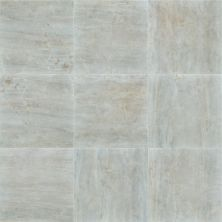 Shaw Floors Ceramic Solutions Trace 24×24 Matte Pearl 00150_320TS