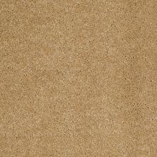 Anderson Tuftex Infinity Abbey/Ftg Hazelbrook Etched Gold 00223_335AF
