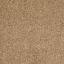 Anderson Tuftex Infinity Abbey/Ftg Hazelbrook Oak Plank 00274_335AF