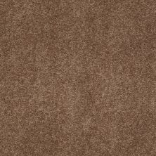 Anderson Tuftex Infinity Abbey/Ftg Hazelbrook Mocha Latte 00776_335AF