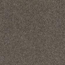 Anderson Tuftex SFA Blitz Ash Gray 00574_33SSF
