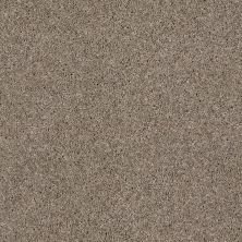 Anderson Tuftex SFA Blitz Taupe Mist 00712_33SSF