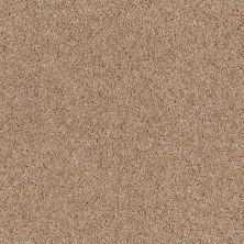 Anderson Tuftex SFA Bolero Copper Dust 00664_34SSF