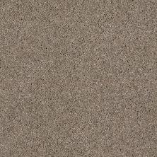 Anderson Tuftex SFA Bolero Taupe Mist 00712_34SSF
