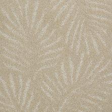 Anderson Tuftex Creative Elegance (floors To Go) Gracious Living Daisy 00122_500AF