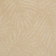 Anderson Tuftex Creative Elegance (floors To Go) Gracious Living Gold Dust 00225_500AF