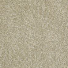 Anderson Tuftex Creative Elegance (floors To Go) Gracious Living Tropic 00424_500AF