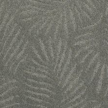 Anderson Tuftex Creative Elegance (floors To Go) Gracious Living Chambray 00477_500AF