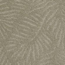 Anderson Tuftex Creative Elegance (floors To Go) Gracious Living Smoky Slate 00513_500AF