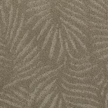 Anderson Tuftex Creative Elegance (floors To Go) Gracious Living Roasted 00771_500AF