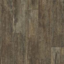 Shaw Floors Resilient Home Foundations Torino Plank Genoa 00773_500RG