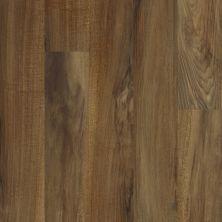 Shaw Floors Resilient Home Foundations Torino Plank Verona 00802_500RG
