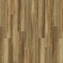 Shaw Floors Resilient Home Foundations Torino Plus Malta 00203_501RG