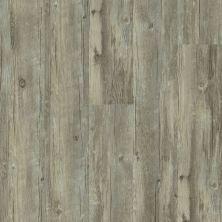 Shaw Floors Vinyl Home Foundations Torino Plus Roma 00507_501RG