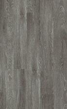 Shaw Floors Resilient Home Foundations Torino Plus Pola 00590_501RG
