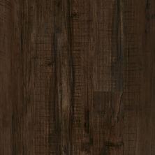 Shaw Floors Vinyl Home Foundations Torino Plus Parma 00734_501RG