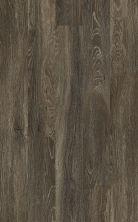 Shaw Floors Resilient Home Foundations Torino Plus Mila 00753_501RG