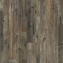 Shaw Floors SFA Largo Mix Plus Calabria Pine 00738_501SA