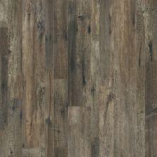 Shaw Floors SFA Largo Mix Plus Calabria Pine 00738_501SA