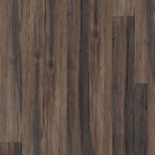 Shaw Floors SFA Largo Plus Nocciola 00702_502SA