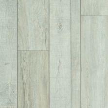 Shaw Floors Resilient Residential Apostleislndhdplus Vista 00197_503GA