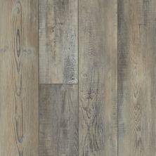 Shaw Floors Resilient Residential Apostleislndhdplus Tempesta 00594_503GA