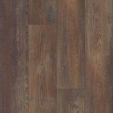 Shaw Floors Vinyl Residential Apostleislndhdplus Orso 00794_503GA