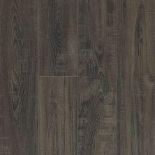 Shaw Floors Resilient Residential Apostleislndhdplus Onice 00903_503GA