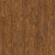 Shaw Floors SFA Casa Plus Oro 00255_503SA