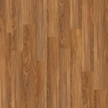 Shaw Floors SFA Casa Plus Teak 00603_503SA